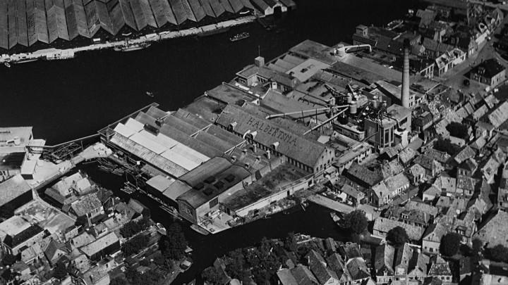 De 'houtsjefabryk' van Halbertsma besloeg rond 1950 een groot deel van Grou.