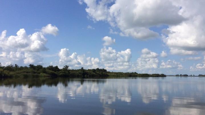 Roos van Erp maakte een fraaie foto in Nationaal Park de Alde Feanen.