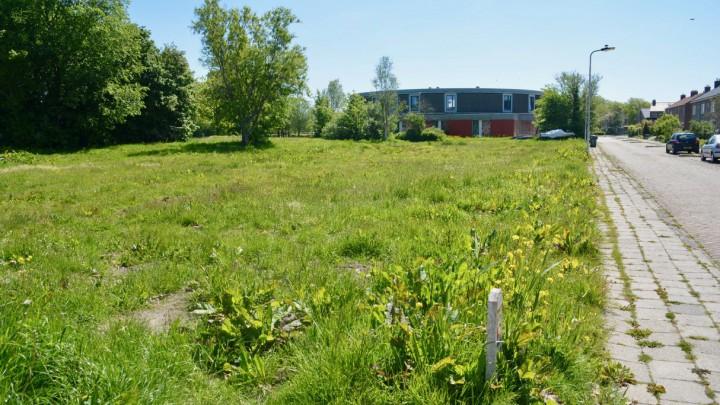 Op deze plek komen 15 nieuwe huurwoningen. Op de achtergrond Friesma State.