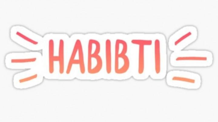 Vrouwencafé Habibti: voor nieuwkomers en Nederlanders
