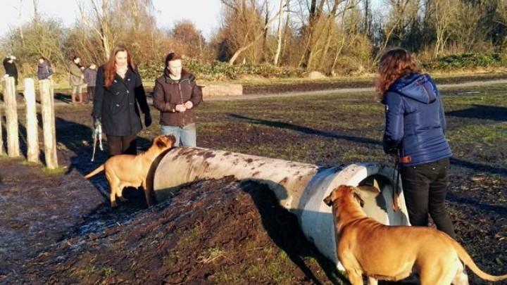 Isabelle Diks en Alice Wildeboer met hun honden op het speelterrein.
