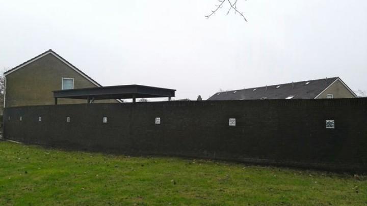 Jongens wilden over muur politiebureau