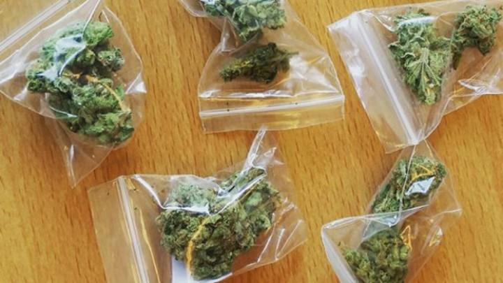 Plastic zakjes met hennep, bedoeld voor de handel. (Foto: Politie)