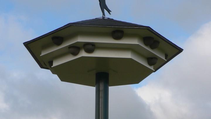 De 'Grouster' zwaluwtil komt er ongeveer uit te zien zoals deze in Brummen. (Foto: Vogelwerkgroep Oost-Veluwe)